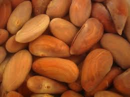 Jackfruit seeds after removing Outer Skin